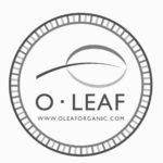 O Leaf Logo