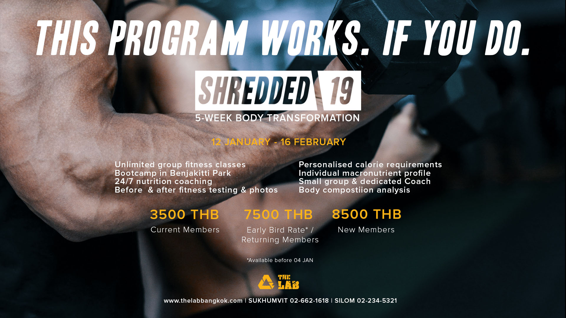 Shredded 19 Newsletter & Web_inclusions