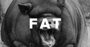 Blog Post - FAT 2 - 1200x628